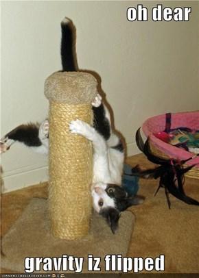 oh dear  gravity iz flipped
