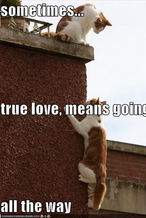 sometimes... true love, means going  all the way
