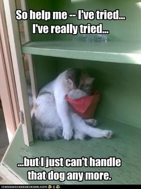So help me -- I've tried... I've really tried...