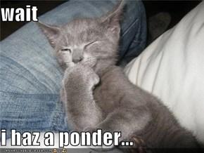 wait  i haz a ponder...