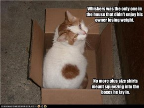 Whiskers was the only one in the house that didn't enjoy his owner losing weight.