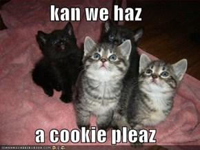 kan we haz  a cookie pleaz