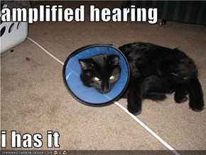 amplified hearing  i has it