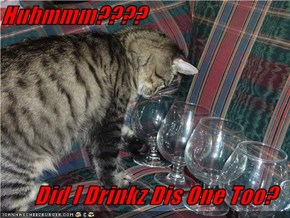 Huhmmm????  Did I Drinkz Dis One Too?