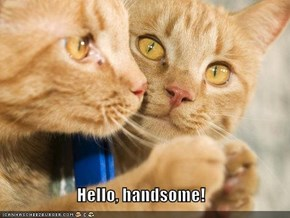 Hello, handsome!