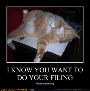 I KNOW YOU WANT TO DO YOUR FILING
