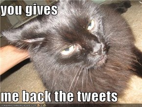 you gives  me back the tweets