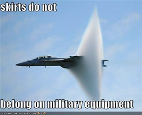 skirts do not  belong on military equipment
