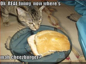 Ok. REAL funny, now where's   mah cheezburger?