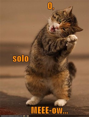 O,        solo         MEEE-ow...