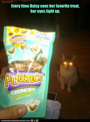 Every time Daisy sees her favorite treat,  her eyes light up.