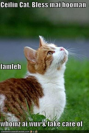 Ceilin Cat, Bless mai hooman famleh whomz ai wuv & take care of