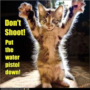 Don't Shoot!
