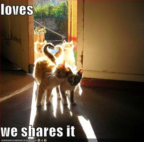 loves  we shares it
