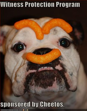 Witness Protection Program  sponsored by Cheetos.