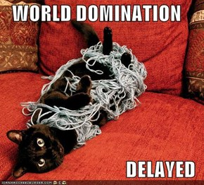 WORLD DOMINATION  DELAYED