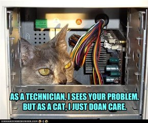 AS A TECHNICIAN, I SEES YOUR PROBLEM. BUT AS A CAT, I JUST DOAN CARE.