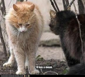 U has a mean.