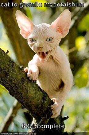 cat to gremlin myootaishun:  80% complete
