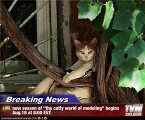 "Breaking News - new season of ""the catty world of modeling"" begins Aug.18 at 8:00 EST"