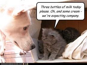 The milkman always barks twice
