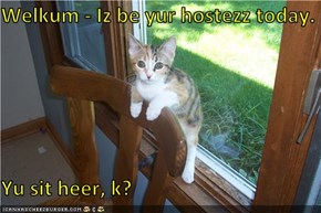 Welkum - Iz be yur hostezz today.  Yu sit heer, k?