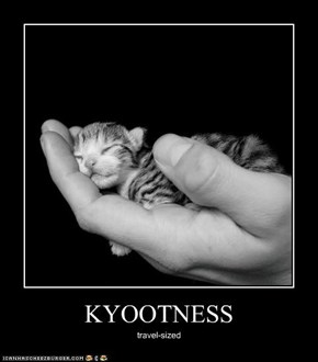 KYOOTNESS