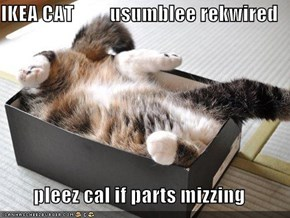 IKEA CAT         usumblee rekwired        pleez cal if parts mizzing