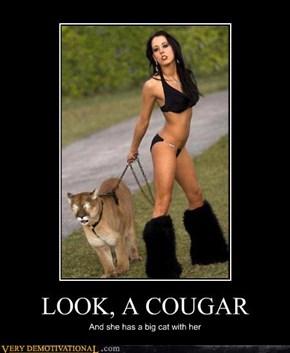 LOOK, A COUGAR
