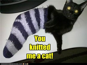 You knitted me a cat!