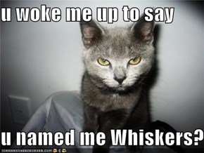 u woke me up to say  u named me Whiskers?