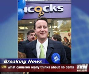 Breaking News - what cameron really thinks about lib dems