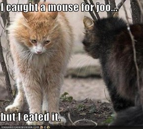 I caught a mouse for joo...  but I eated it.