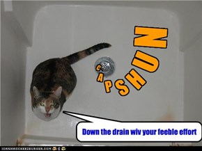 Hahahahaha... I pulled the plug on your CAPSHUN . . . . .
