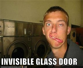 INVISIBLE GLASS DOOR