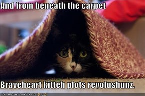 And from beneath the carpet  Braveheart kitteh plots revolushunz.