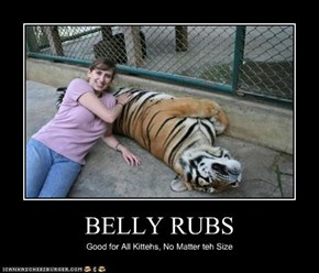 BELLY RUBS