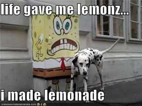 life gave me lemonz...  i made lemonade