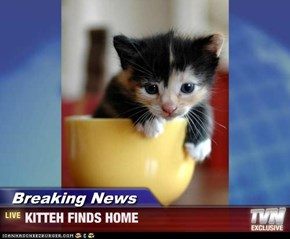 Breaking News - KITTEH FINDS HOME
