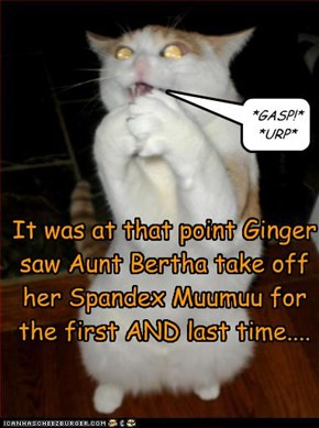 It was at that point Ginger saw Aunt Bertha take off her Spandex Muumuu for the first AND last time....