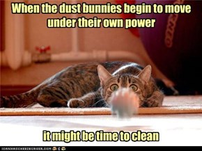 When the dust bunnies begin to move under their own power