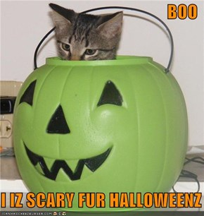 BOO  I IZ SCARY FUR HALLOWEENZ