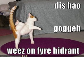 dis hao goggeh weez on fyre hidrant