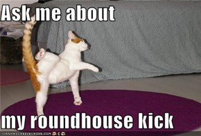 Ask me about  my roundhouse kick
