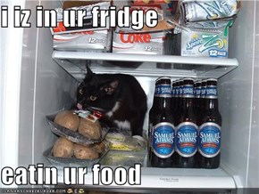 i iz in ur fridge  eatin ur food