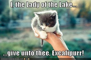 I, the Lady of the Lake...  ...give unto thee, Excalipurr!