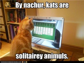 By nachur, kats are