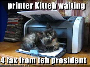 printer Kitteh waiting  4 fax from teh president