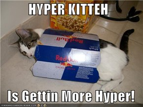 HYPER KITTEH  Is Gettin More Hyper!