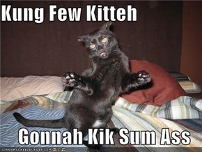Kung Few Kitteh   Gonnah Kik Sum Ass